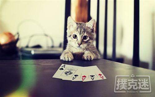 不要用结果判断一手牌打的对不对